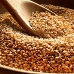 семена кунжута фото