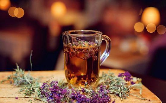 чай отвар душица фото