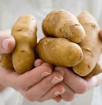сырой картофель польза фото