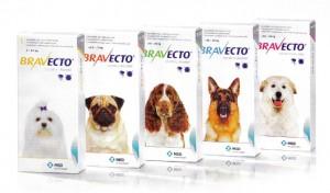 Таблетки от клещей для собак – преимущества, описание